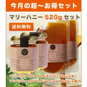 送料無料 マリーハニーTA 20+(130g)ボトル×2本/スタンドパック×2個 マヌカハニーと同様の健康活性力!オーストラリア・オーガニック認定 honey はちみつ 蜂蜜|jarrah
