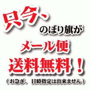 のぼり旗 防獣・防鳥 (W600×H1800)農業資材・農業機械|jcshop-nobori|02