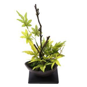 【花雅シリーズ】苔玉とカエデの盆栽風アレンジ楓  和風アレンジ ギフト インテリア jd-bridal