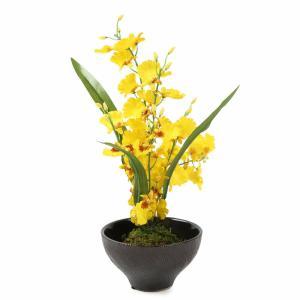 【花雅シリーズ】オンシジウム黄色 苔玉とオンシジウムの盆栽風アレンジ   和風アレンジ  ギフト インテリア jd-bridal