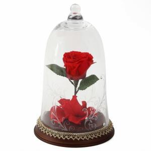 美女と野獣 薔薇 ローズドーム ガラスドーム 魔法の薔薇 プリザ アレンジ|jd-bridal