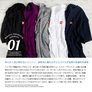 【THE NORTH FACE ザノースフェイス】S/S Small Box Logo Tee スモールボックスロゴ 半袖Tシャツ NT31955|jeansstation|02