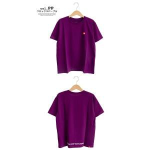 【THE NORTH FACE ザノースフェイス】S/S Small Box Logo Tee スモールボックスロゴ 半袖Tシャツ NT31955|jeansstation|08