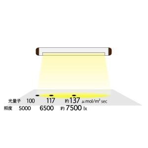 水耕栽培 室内育成 植物育成用LEDライトキット・【 AGLIGHT 】|jecom-online|04