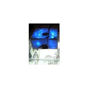 3チップLEDファン付角型照明|jellyclub-onlin
