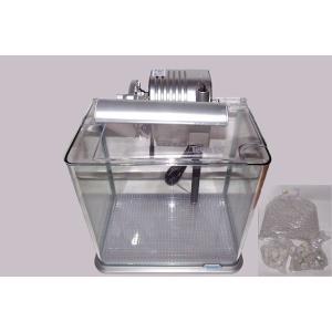 小型ベントス飼育水槽|jellyclub-onlin