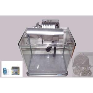 小型ベントス水槽 スタートキット付き|jellyclub-onlin