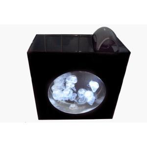 JellyCube HC-21水槽(LED照明内蔵)|jellyclub-onlin