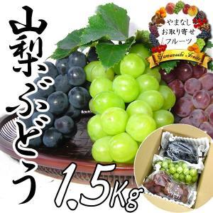 敬老の日 ギフト ぶどう 山梨産 三種お任せ詰合せ 3房入 1.5Kg ブドウ|jerichojericho