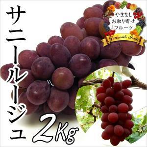ギフト ぶどう 山梨産 サニールージュ 2kg 葡萄 ブドウ|jerichojericho