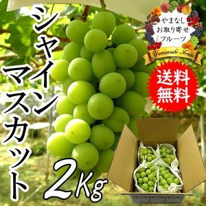 ギフト ぶどう 山梨産 シャインマスカット 2kg 葡萄 ブドウ|jerichojericho
