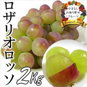 ギフト ぶどう 山梨産 ロザリオロッソ 2kg 葡萄 ブドウ|jerichojericho