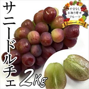 ギフト ぶどう 山梨産 サニードルチェ 2kg 葡萄 ブドウ|jerichojericho