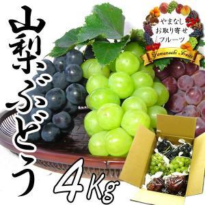 敬老の日 ギフト ぶどう 山梨産 3〜5種お任せ詰合せ 4Kg ブドウ|jerichojericho