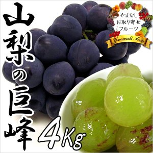 敬老の日 ギフト ぶどう 山梨産 巨峰 4kg 葡萄 ブドウ|jerichojericho