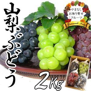 敬老の日 ギフト ぶどう 山梨産 3種お任せ詰合せ 2Kg ブドウ|jerichojericho