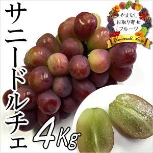 ギフト ぶどう 山梨産 サニードルチェ 4kg 葡萄 ブドウ|jerichojericho