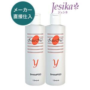 ジザニア シャンプーY 2本セット 300ml×2 ノンシリコン 天然成分無添加  細毛、薄毛、柔らかい髪用  美容室専売品|jesika