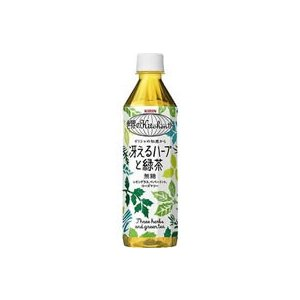キリン/世界のKitchenから 冴えるハーブと緑茶 500ml|jetprice