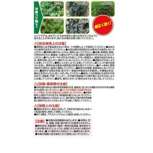 アース製薬/アースガーデン おうちの草コロリ コケ取りシャワー 1000ml|jetprice|02