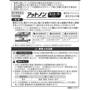 【第2類医薬品】薬)小林製薬/アットノンt コンシーラータイプ 10g|jetprice|02