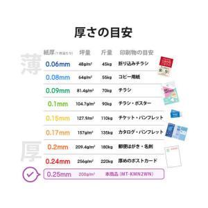 エレコム/名刺用紙 マイクロミシン 厚口 120枚 ホワイト/MT-KMN2WN|jetprice|06