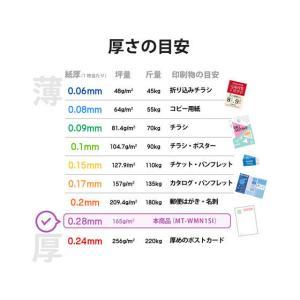 エレコム/名刺用紙 マイクロミシン 厚口 30枚 和柄/MT-WMN1SI|jetprice|06