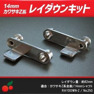 レイダウンキット 14mmシャフト用 no.250