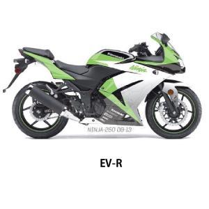 FACTORY-EFFEX(ファクトリーエフエックス) Kawasakiスポーツバイクプレカットグラフィックラップキット Kaw Ninja 250 (08-12)|jetwave