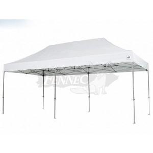 E-ZUP(イージーアップ) デラックス テント ディーエックス60 スチール スチールフレーム WHT/3.0mx6.0m|jetwave