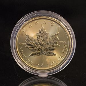 カナダ メイプルリーフ金貨 1oz 2016|jewelelegance