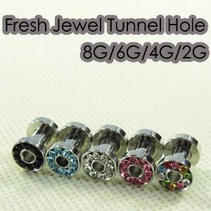 ボディピアス 8G 6G 4G 2G フレッシュジュエルトンネルホール 耳ピアス 拡張 ステンレス シルバー ボディーピアス|jewels-store