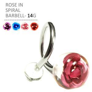 ボディピアス ボディーピアス ローズインスパイラル 14G|jewels-store