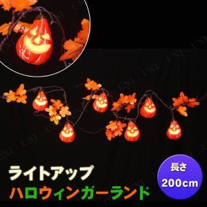 ハロウィンにピッタリなガーランドライトです。スイッチを入れるとパンプキンの中のLEDがゆっくりと点滅...