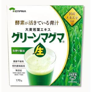 グリーンマグマ 170g (日本薬品開発)