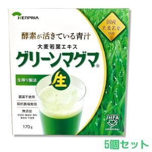 グリーンマグマ 170g 5個セット +オマケ付 30包 (日本薬品開発)