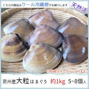 房州産大粒はまぐり 約1kg5~8個 お中元・お歳暮|jf-higashiawa
