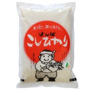 母の日 石川県産 2020年産 新米 特別栽培米 農薬を使わないこしひかり 白米2kg 精米 産地直...