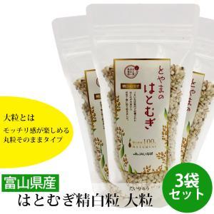 お中元 御中元 JAいなば 富山県産はとむぎ精白粒 大粒 200g 3袋セット 産地直送|jibamon