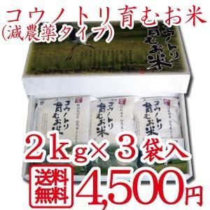令和元年産 食べる健康!食べる貢献!コウノトリ育むお米減農薬 無化学贈答用 2kg×3袋セット 贈答 ギフト コシヒカリ|jigomeya