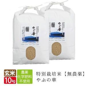 無農薬 無化学肥料 送料無料 玄米 10kg 5kg×2袋 やぶの華 養父市限定有機 肥料 コシヒカリ 西日本 但馬産 特A 玄米カイロ 無農薬米  令和元年産|jigomeya