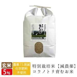 減農薬 無化学肥料 送料無料 玄米 5kg コウノトリ育むお米 有機 肥料 西日本 但馬産 特A 米 玄米カイロ 妊活 たまごクラブ 提供 上野動物園|jigomeya