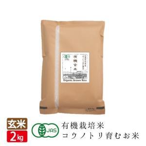 有機JAS 有機玄米 コウノトリ育むお米 やまだわら 多収穫米 2kg 送料無料 オーガニック|jigomeya