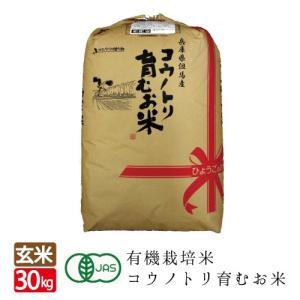 有機JAS コウノトリ育むお米 コシヒカリ 玄米 30kg|jigomeya