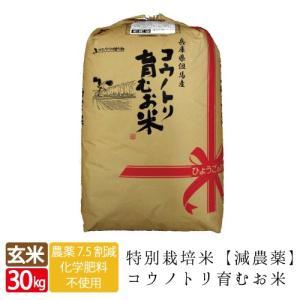 送料無料 減農薬 無化学特別栽培 食べる健康!食べる貢献!コウノトリ育むお米 玄米 30kg コシヒカリ特A|jigomeya