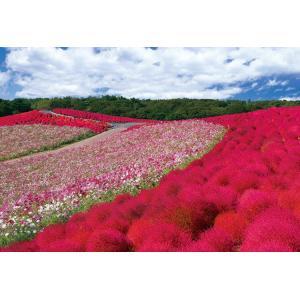ジグソーパズル EPO-25-152 日本の風景...の商品画像