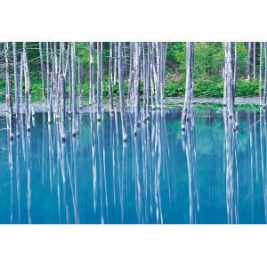 ジグソーパズル EPO-71-333 風景 青い池-北海道 300ピース 【あすつく】 [CP-OS...