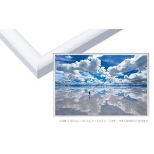 商品名:EPP-66-119 パネルマックス No.19 / 20-T ホワイト 73×102cm(...