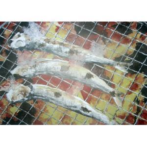 焼きいわし 透明水彩画4号サイズ額付き画家小堀英司国際向陽美術家協会会員 jinbou