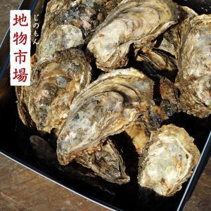 的矢産真牡蠣のカンカン焼き15個入り|jinomon